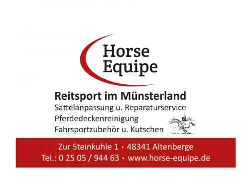 Horse Equipe
