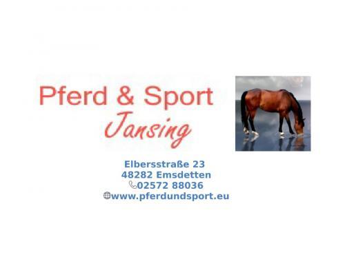 Pferd Sport Jansing